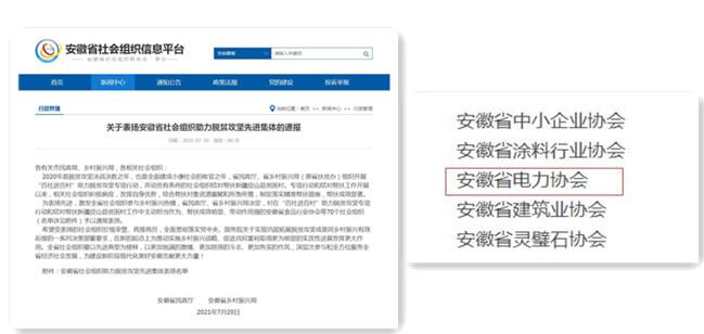 """协会荣获""""安徽省社会组织助力脱贫攻坚先进集体""""称号"""